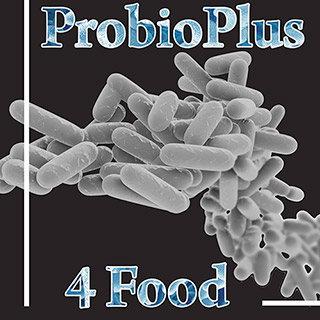 roelmi hpc partecipates at probioplus 4 food